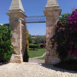 Rif. V050 Prestigiosissima villa '800 in Sicilia trattative riservate