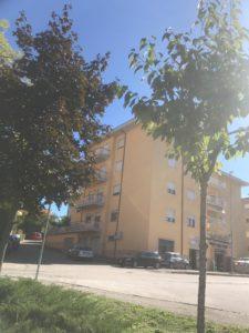 RIF. V095 Appartamento con terrazzo e giardino S.Barbara